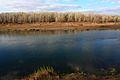 Река Урал - panoramio (1).jpg