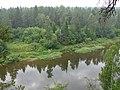 Река Чусовая (Chusovaya riverside) - panoramio.jpg