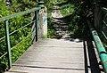 Смотрицький каньйон Білка або вивірка IMG 8510 02.jpg