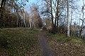 Тропа до березового гаю понад озером.jpg