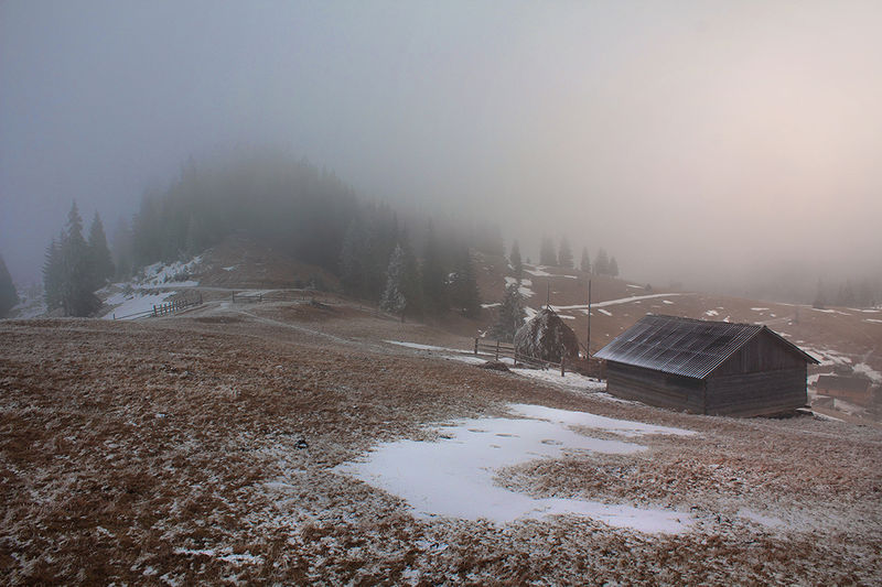 Туманний ранок у Карпатському національному природному парку. Автор фото — Krasnickaja Katya (CC-BY-SA-4.0)