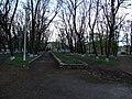 Центральний парк - panoramio.jpg