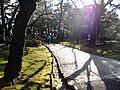 兼六園 - panoramio (45).jpg