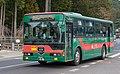 南海りんかんバス (49063262703).jpg