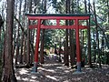 東吉野村小川 小川城址にて稲荷神社鳥居 Shrine gate of Inari-jinja in Ogawa castle 2011.2.22 - panoramio.jpg