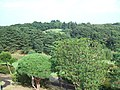 生田緑地・川崎国際ゴルフ場 - panoramio.jpg