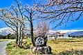 白馬村の道祖神と桜.jpg