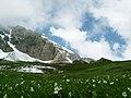 005 Alta valle Maira, conca delle Grange del Tibert.jpg