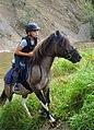 02018 0455 Abschied vom Sommer, Reiten auf den Huzulen Pferden in Rudawka am Wisłok.jpg