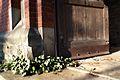 1428aviki Cmentarz żydowski przy ul. Lotniczej. Foto Barbara Maliszewska.jpg