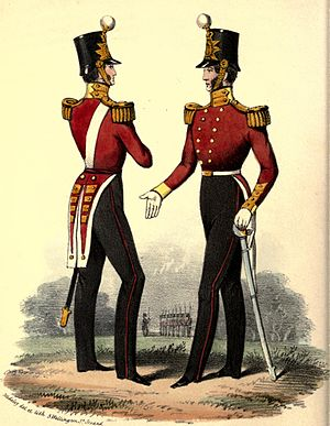 Bedfordshire and Hertfordshire Regiment - Regimental uniform, 1848