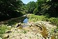 170811 Rokko Alpine Botanical Garden Kobe Japan15n.jpg