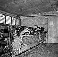 1966 Domaine expérimentale de La Sapinière à Bourges-44-cliche Jean-Joseph Weber.jpg