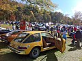 1975 AMC Pacer base model at 2012 Rockville d.jpg