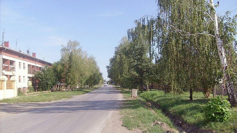 File:2009.07.27. Föutca - panoramio.jpg