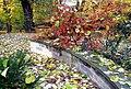 20121029060DR Dresden-Südvorstadt Beutlerpark Herbst.jpg
