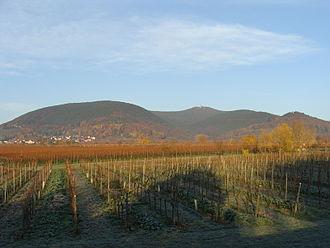 Kalmit - Image: 2012 Pfälzerwald 523 Kalmitmassiv