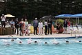2012 World's Largest Swimming Lesson (7422182256).jpg