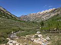 2014-06-23 14 06 12 View down Lamoille Creek where it passes under Lamoille Canyon Road in the upper portion of Lamoille Canyon, Nevada.JPG