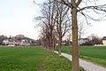 20140329181500 Neulengbach Allee 4796.jpg