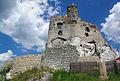 20140619 Zamek w Mirowie 3832.jpg