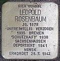 2015-11-21 Neustadt am Rübenberge Stolperstein Rosenbaum Leopold (cropped).jpg
