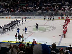 2015 IIHF World Championship – DEN vs FIN (8).jpg