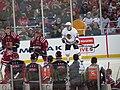 2015 NHL Winter Classic IMG 8053 (16321217195).jpg