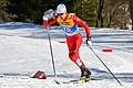 20190227 FIS NWSC Seefeld Men CC 15km Qiang Wang 850 4425.jpg