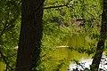 20200503Drahtzugweiher und das Habsterwiesental 12.jpg