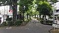 20200605 114852経堂の緑道.jpg