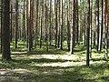 22.07.2007 - panoramio (1).jpg