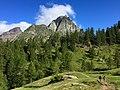 2 alpe Devero, il Grande Est.jpg