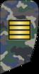 4- IRIADF-Cpl.png