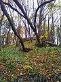 565 01 Choceň, Czech Republic - panoramio (38).jpg