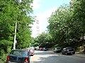 7 - panoramio - eug.sim (2).jpg
