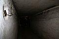 8307viki wejście do tunelu pod peronami.jpg