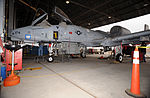 A-10, From Trainer to Storm Chaser 130124-F-EN010-006.jpg