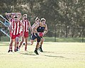 AFL Bond University Bullsharks (18146948785).jpg