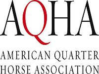 Image illustrative de l'article American Quarter Horse Association