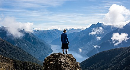 Fiordland National Park A View from the Top (Unsplash).jpg