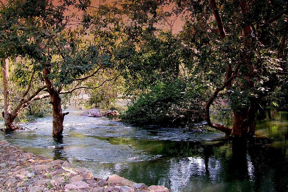 A View of Sita Mata sanctuary, Pratapgarh, Rajasthan, India
