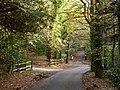 A corner of Tupwood Scrubbs Road - geograph.org.uk - 1585441.jpg