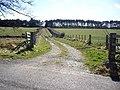 A farm track near Greystone - geograph.org.uk - 1224277.jpg
