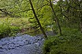 A river running through Arley Wood - geograph.org.uk - 2396589.jpg