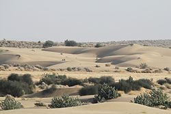 A view on Sams sand dunes.JPG