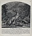 A white stag brought down by a pack of dogs. Etching by J.E. Wellcome V0021080.jpg