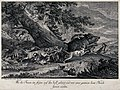 A wild boar is chased and attacked by a pack of dogs during Wellcome V0021163.jpg
