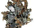 Acanthite-Silver-t06-195c.jpg