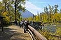 Adams River viewing platform - panoramio.jpg
